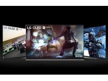 G-SYNC on LG OLED TV E9 C9 B9_4
