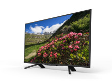 43 inch RF45 Full HD HDR TV series