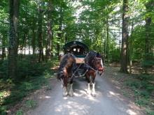 Geschwisterkinder fahren ins Sommerfreizeitcamp nach Oberau