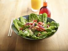 Lifestyle Chilli Chicken Salad