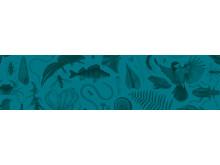 2-EPI-Artfakta_liggande-bakgrund-havsvik