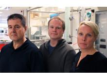Teamet bakom koldioxidforskningen på Luleå tekniska universitet är Paul Christakopoulos, professor, Magnus Sjöblom, forskare och projektledare och professor Ulrika Rova, alla inom biokemisk processteknik.