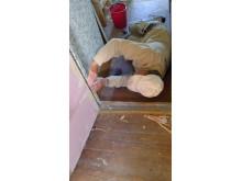 Byggnadsvårdsläger vid Hvita villan - tapetsering