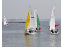 Triator Citysailing 2014