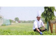 Hållbarhetsprogram Planet21