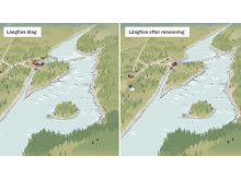 Långforsen före och efter renovering med faunapassage