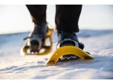 Snow shoeing in Jämtland Härjedalen