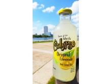 calypso press 3