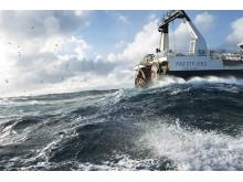 Havet er rikt på ressurser