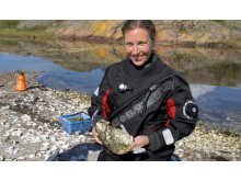 Odling av stillahavsostron, Åsa Strand, marinbiolog,