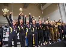 NM-guld i truppgymnastik 2013 till Brommagymnasternas herrar