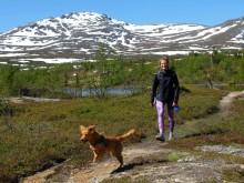 Anna Swenn Larsson - vandra