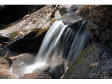 WSP visar vägen för svenskt vatten