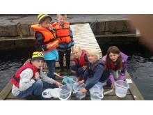 Lägerbarn sommaren 2016, Strandskolan, Havets Hus i Lysekil