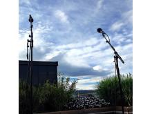 Beste utsikten å spille for Thief Music Unplugged Thief Roof 14 mai