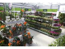 Blomsterandet butiksbild