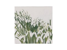 snowdrops_papirservietter_33x33_cm_hvit_grønn_29.90