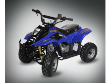 TMS ATV 50cc