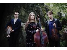 Trio törn från Stockholm