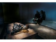 Grauballemanden Moesgaard Museum
