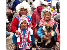 LOS-tur til Peru