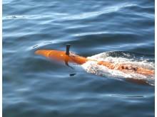 A Kongsberg Maritime HUGIN Autonomous Underwater Vehicle (AUV) at the surface