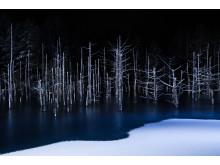Hiroshi Tanita_Japan_Open_Nature_courtesy of SWPA 2017