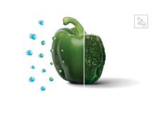 IonAir-teknologi - Naturlig mikroklima inni kjøleskapet