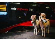 MTR Express Hästtåg