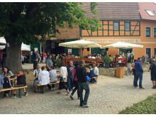 Saale-Weinmeile 2015
