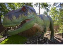 17 april öppnar nya dinosaurieutställningen på Parken Zoo Eskilstuna
