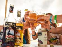 Goslings-lifestyle-cheers