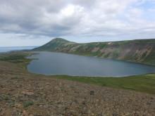 Landskapsbild över ett av provtagningsområdena på norra Island.
