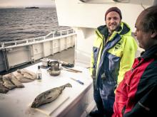 Frischer kann Fisch nicht zubereitet werden
