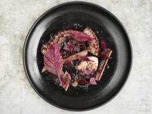 Grillad bläckfisk av Frida Ronge