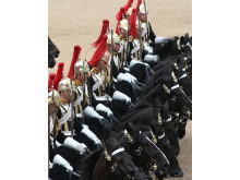 Household Cavalry, London #2