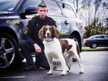 Årets narkotikasökhund 2016