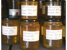 Paul Svenssons första honungsskörd