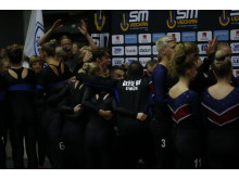 SM i truppgymnastik 2018