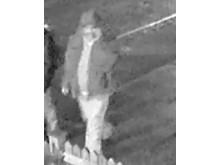 Suspect 2 [image ref 238700]