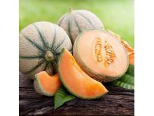 Melon 'Cantaloupe'