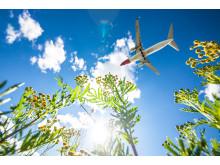 Avión y medio natural