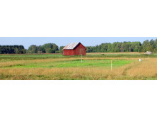 Fältförsök om förlust av organiskt material vid odling / The Swedish study site
