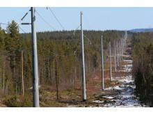 Ny kraftledning mellan Sege och Vinneberg i Skåne