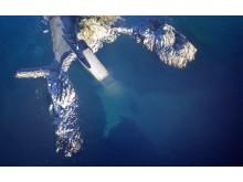 Under von oben - es wird das größte Unterwasser-Restaurant der Welt.