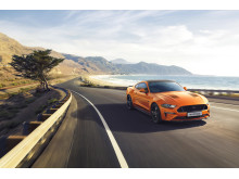 Ford Mustang55 spesialutgave 2019
