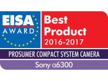 EUROPEAN PROSUMER COMPACT SYSTEM CAMERA 2016-2017 - Sony 6300