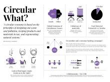 Infographics White Monday