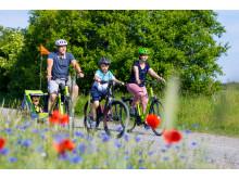 E-Bike-Ausflug im Elbe-Elster-Land