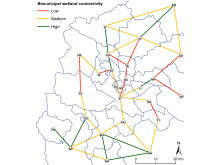 Bimunicipal wetland connectivity
